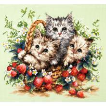 Гоблен Чудесная игла 58-12 Прекрасни котенца