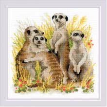 Гоблен Риолис 1761 Meerkats